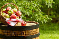 Бу завод для производства яблочного концентрата 4000 л/ч