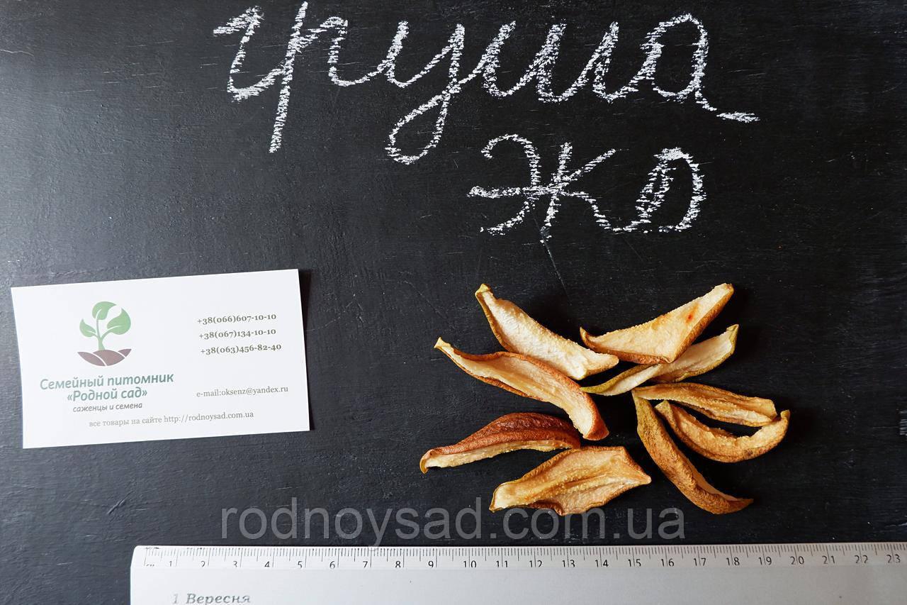 Груша сушеная домашняя (100 грамм) сухофрукт, сушка, цукаты из фруктов