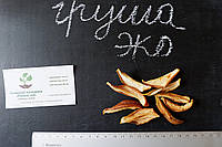 Груша сушеная домашняя (50 грамм) сухофрукт, сушка, цукаты из фруктов