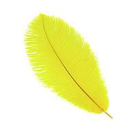 Перо страуса Декоративные (Перья) Желтые 20-25 см 5 шт/уп, фото 1