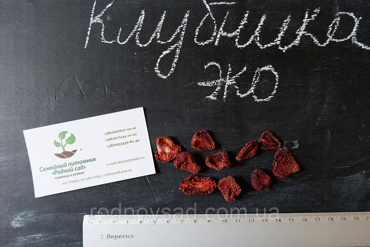 Клубника сушеная 100 грамм домашняя (сушена полуниця) натуральный вяленый сухофрукт