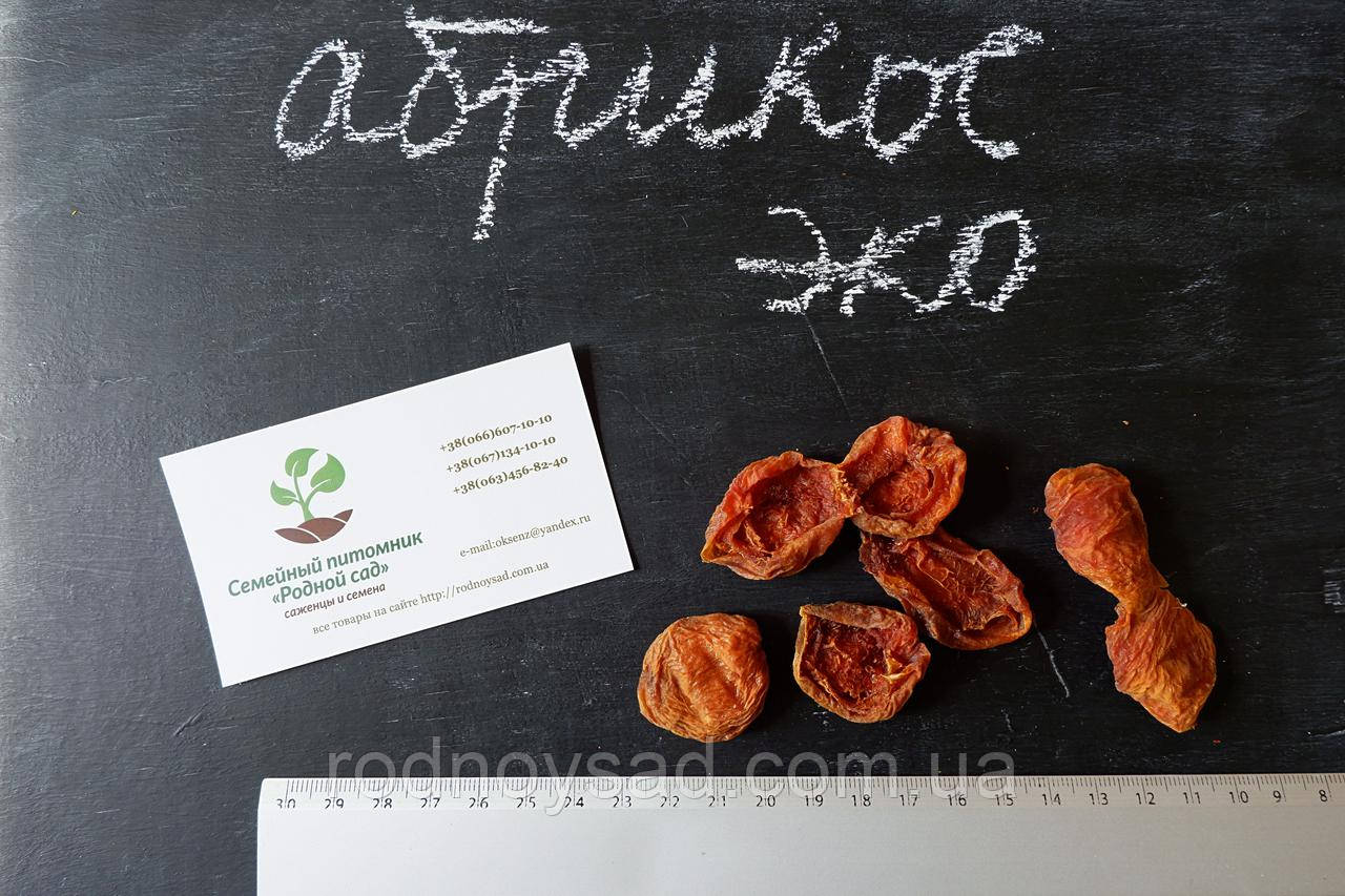 Абрикос сушеный домашний (50 грамм)