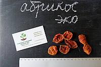 Абрикос сушеный домашний (50 грамм) курага сухофрукт, сушка, цукаты из фруктов