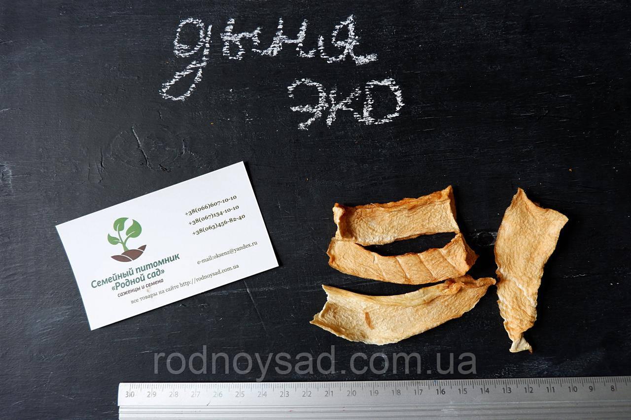 Дыня сушеная домашняя (50 грамм)