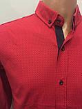 Рубашка мужская на пуговицах рукав трансформер L,XL, фото 2