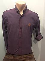 Мужская рубашка в мелкий рисунок на пуговицах S-XL, фото 1