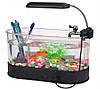 USB органайзер - аквариум для рыб  прозрачный