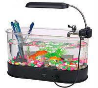 USB органайзер - аквариум для рыб  прозрачный, фото 1