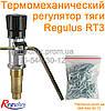 Термомеханический регулятор тяги Regulus RT4 (RT3) на цепочке, Чехия (регулятор температуры подачи котла)