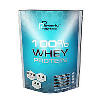 100% Whey Protein 1 кг (протеин), фото 1
