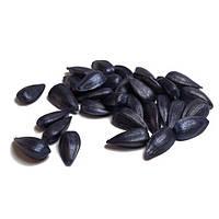 Семена подсолнечника  БАЗАЛЬТ (Новинка)