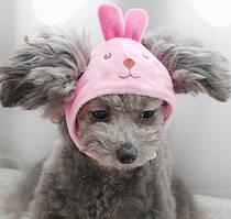 Шапка для собак «Зайчик», розмір S
