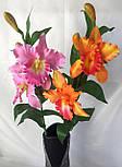 Искусственные орхидеи  Эпидендровые. род каттлея, дактилосталикс., фото 4