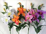 Искусственные орхидеи  Эпидендровые. род каттлея, дактилосталикс., фото 2