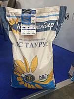 Купить Подсолнечник НС Таурус (екстра), фото 1