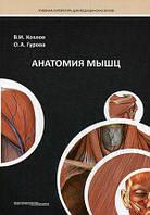 Козлов В.И., Гурова О.А. Анатомия мышц. Учебное пособие