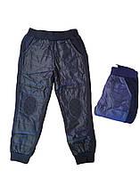 Штаны для мальчиков утеплённые оптом, размеры 1-5 лет F&D. арт. WX-2240