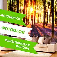 Флизелиновые фотообои из Швейцарии. Новинка в Украине!