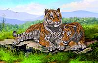 Схема для вышивки бисером тигры КМР 2127