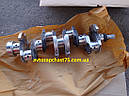 Вал коленчатый Мтз, Д 240, Д243 (Производитель Минский моторный завод, Беларусь), фото 2