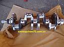 Вал коленчатый Мтз, Д 240, Д243 (Производитель Минский моторный завод, Беларусь), фото 4