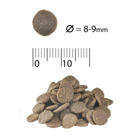 ACANA Adult Small Breed для взрослых собак малых пород, фото 2