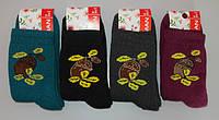 Носки женские махровые 1 пару  Клевер 38-40 раз, фото 1