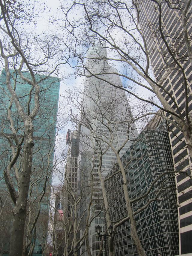 Раздел Кофты с воротником - фото teens.ua - Нью-Йорк,угол 6 авеню и 42 улицы