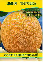 Семена дыни Титовка, 100г