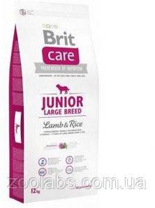 Корм Brit Care для юниоров крупных пород | Brit Care Junior Large Breed Lamb & Rice 12,0 кг