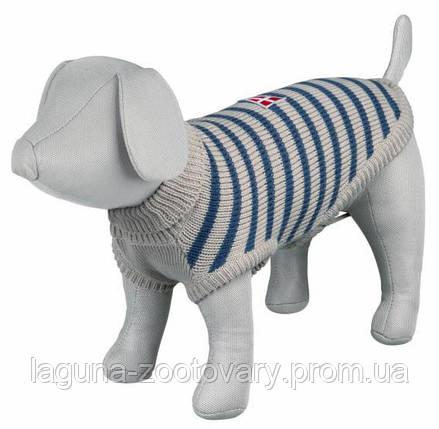 TX-67542 Свитер для собак МИЛТОН XS   30см,  серый/синий, демисезон, фото 2