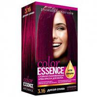 Крем-краска для волос с окислителем №3/16 Color Essence Дикая Слива