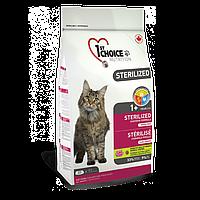 Сухой корм Фест Чойс (1st Choice Sterilized Chicken) для кастрированных котов и стерилизованных кошек, 5 кг