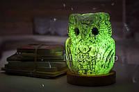 Соляная лампа HealthLamp Филин Зеленый | Ночник из природной Соли с регулятором яркости