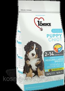 Сухой корм Фест Чойс (1st Choice Medium&Large Puppy Chicken) для щенков средних и крупных пород, 15 кг