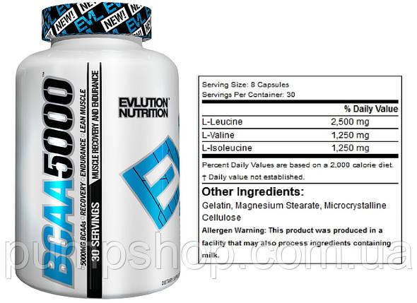 Бцаа BCAA Evlution Nutrition BCAA 5000 240 капс., фото 2