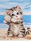 Алмазная вышивка, котик с ракушкой, квадратные стразы, полная выкладка, фото 2