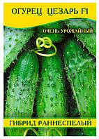 Семена огурца Цезарь F1, 0,5кг