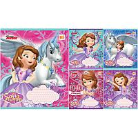 Набор тетрадей 12 листов клетка, YES Sofia Hero Princess
