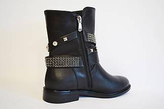 Демисезонные ботинки Fabio Monelli 10598, фото 2
