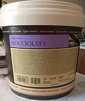 Шоколадный крем с фундуком (NOCCIOLATA), Irca Италия (фасовка 5 кг и 13 кг), фото 1