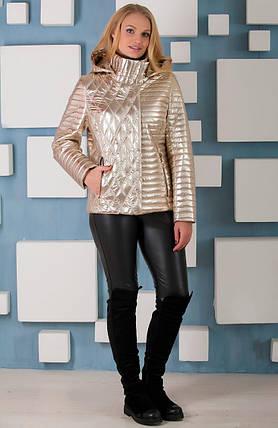 Красивая осенняя  куртка цвет GОLD , большие  размеры 44-60, фото 2