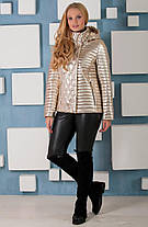 Красивая осенняя  куртка цвет GОLD , большие  размеры 44-60, фото 3