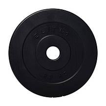 Гантелі композитні Elitum 2 по 10 кг, фото 2