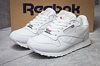 Кроссовки женские Reebok Classic, белые (14432),  [  37 38  ], фото 1