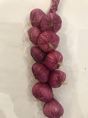 Вязка чеснока, фото 2
