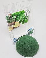 Конжаковый спонж Christian Professionel Зеленый чай