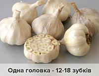 Чеснок севок Гермидор 300 грамм лиловый