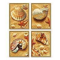 Художественный набор для творчества Ракушки на песке Schipper 9340654