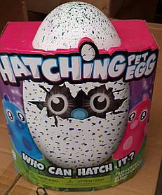 Игрушка Хэтчималс Большое яйцо. Вылупляется! 3 стадии взросления